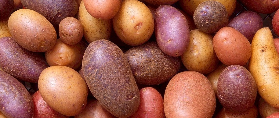 potatoes-522486_960_720.jpg
