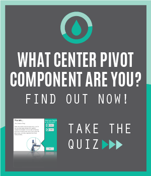 What Component Are You?
